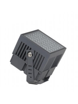 100W LED Architecture Floodlight
