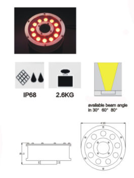12W LED Fountain Light IP68